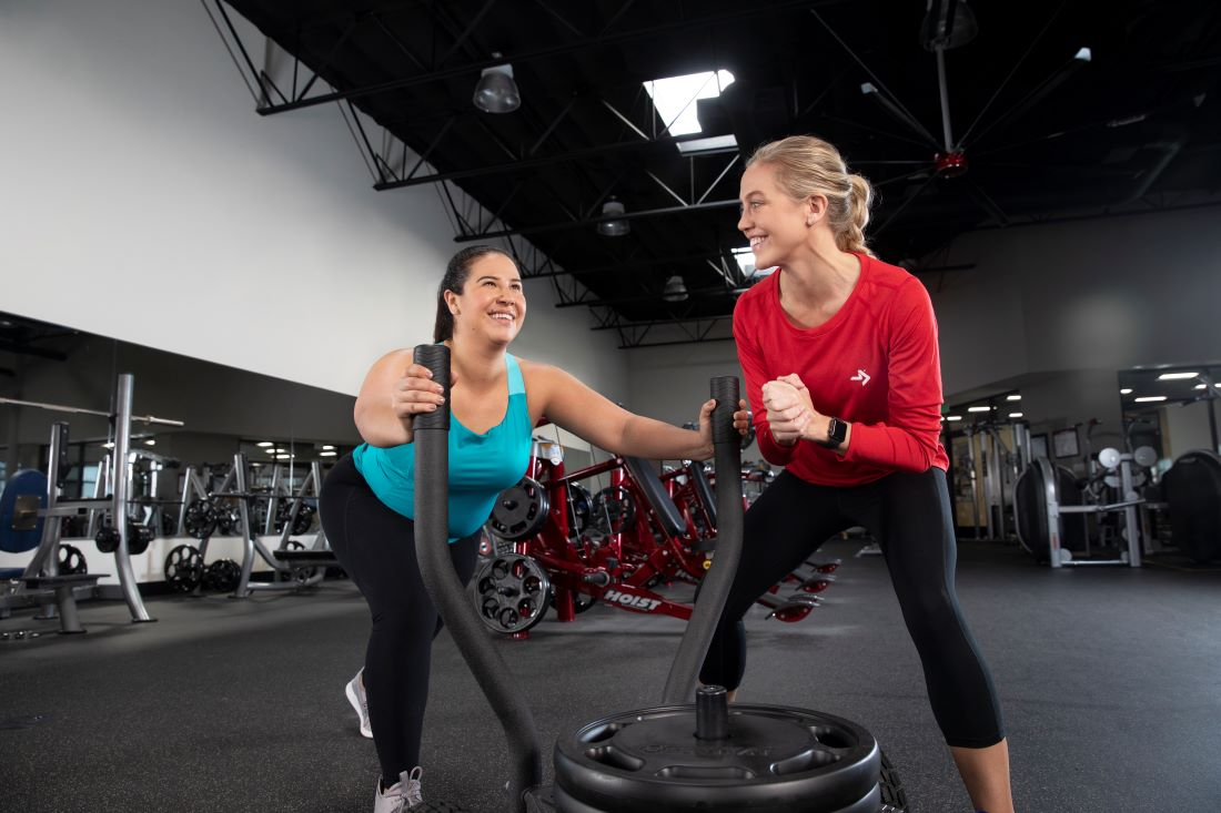Introducing the latest ACE Personal Trainer Study Program