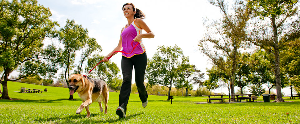 ACE Fit | Fitness Facts | Small steps to increase physical activity