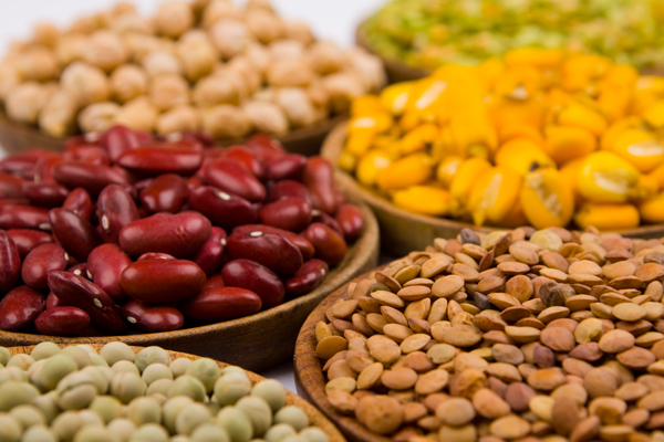 Add Variety to Your Diet with These Plant-Based Protein Sources
