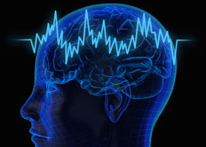 Does Exercise Grow New Brain Cells? | Michael Mantell | Expert Articles | 11/11/2011