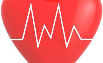 The Heart of the Matter: the Cardiovascular System | April Merritt | Exam Preparation Blog | 3/22/2010