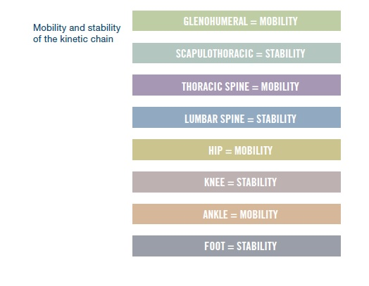 stability-mobility-chain
