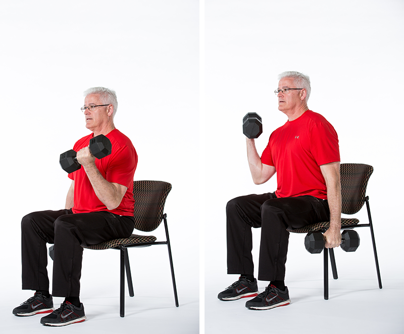 Image result for seated weight lifting for seniors