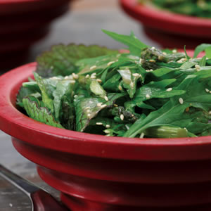 Spicy Green Salad with Soy & Roasted Garlic Dressing