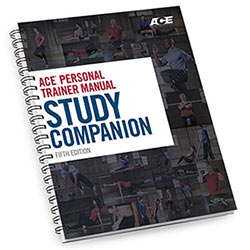 Ace Personal Trainer Manual Study Companion
